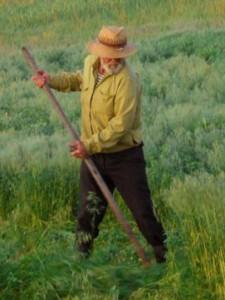 мужчина косит в поле траву