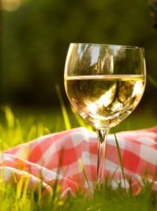 бокал белого вина на траве