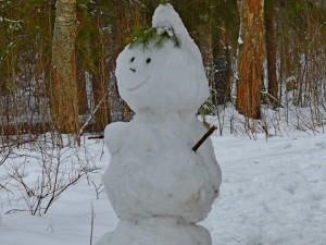 очаровательная снежная баба в лесу