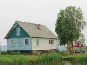 красивый деревенский домик и дерево